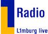 L1 Radio en TV